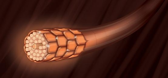 Mineralization - I tecnici del biondo